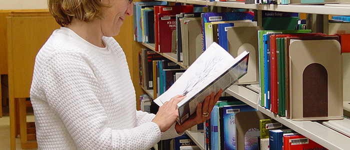 A woman looking through a book selected from a library shelf.